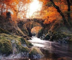 Autumn 🍁🍂