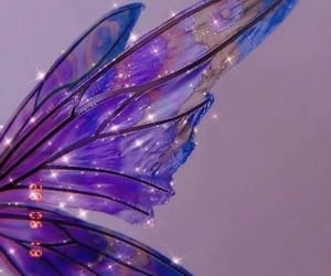 beauty, fairy wings, and fantasy image