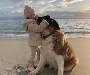 baby, dog, and sea image