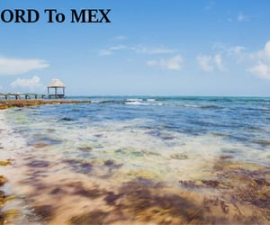 flights from ord to mex and flights ord to mex image