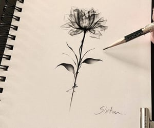 rose, rose tattoo, and rose design image