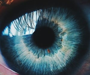 blue, eyes, and pupil image