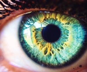 beautiful, eye, and hazel image