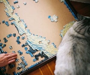 puzzle, cat, and photography image