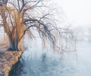 beautiful, blue, and fog image