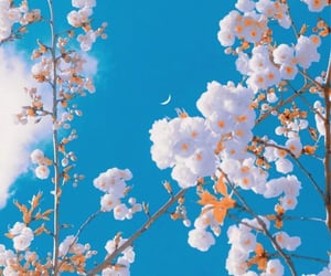 blue sky, moon, and nature image