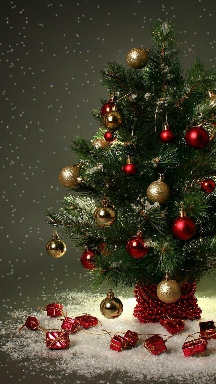 christmas tree and winter image