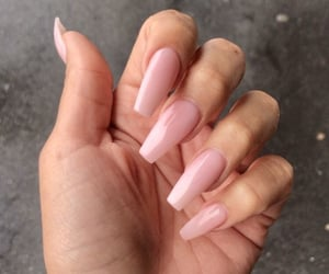 claws, pink, and cute image