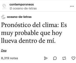 amor, frases en español, and desamor image