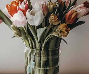 article, flowers, and myhouse image