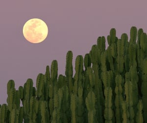 landscape, moon, and sky image