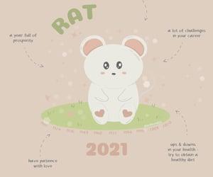 affirmation, horoscope, and illustration image