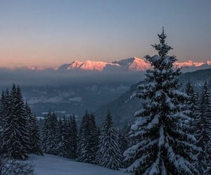 nature, christmas, and snow image