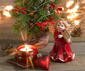 christmas beauty image