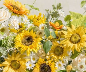 florals, flores, and flowers image