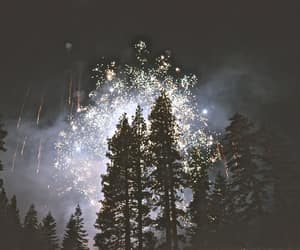 fireworks, night, and tree image