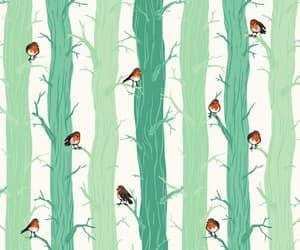 bird and tree image