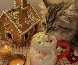 animal, gingerbread, and gingerbread house image