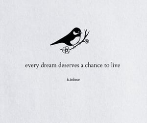 chance, Dream, and enough image