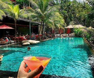 bali, drink, and earth image