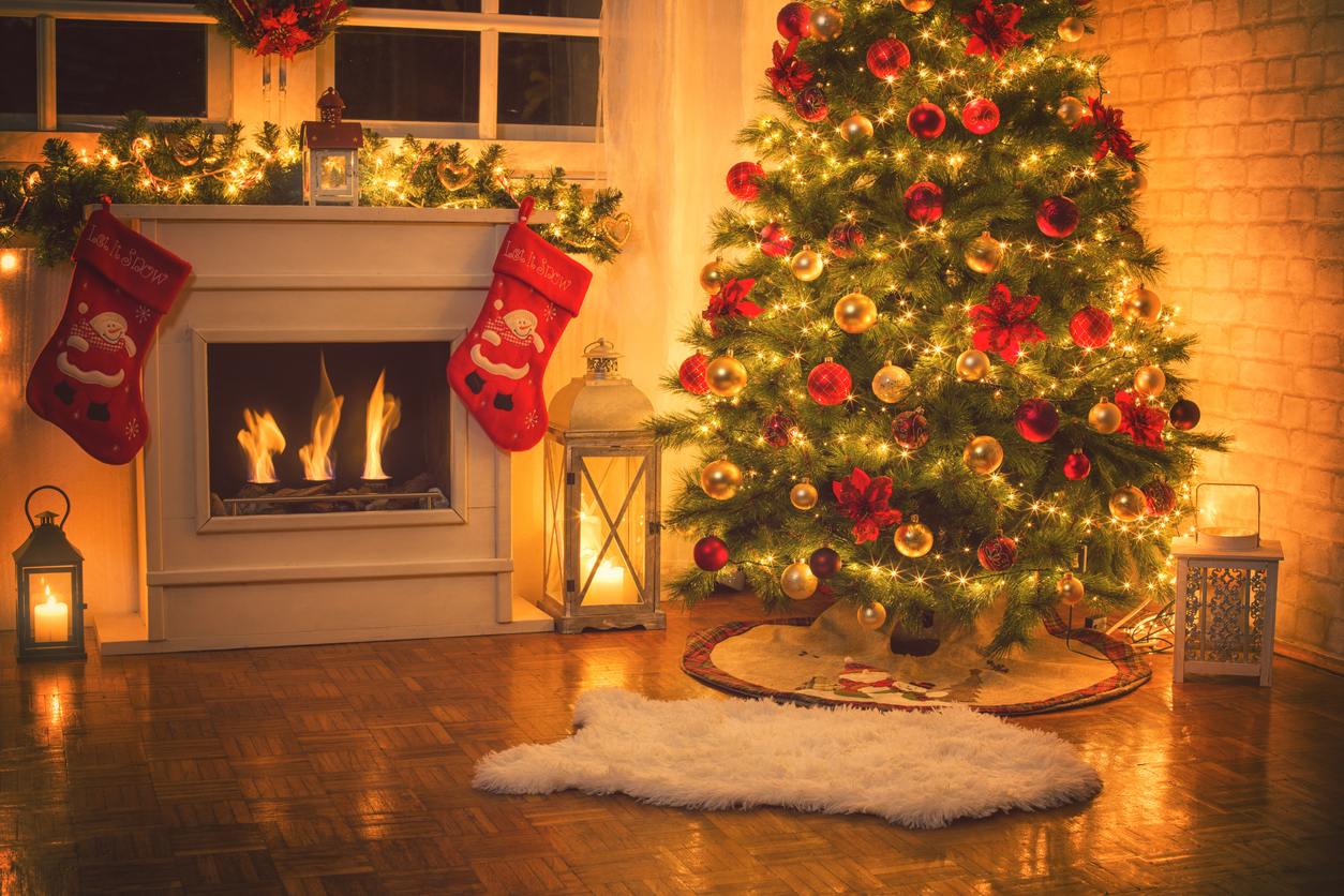 article and holiday christmas eve!!!1 image