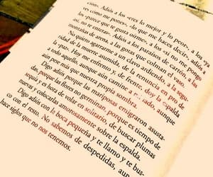 adios, book quotes, and textos de libros image