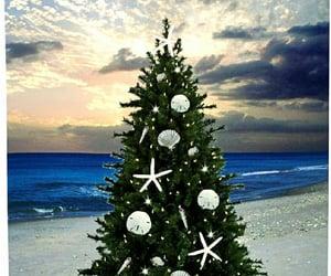 christmas tree, seashore, and holiday image