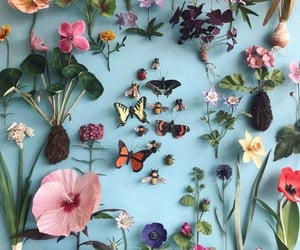 flowers, butterfly, and blue image