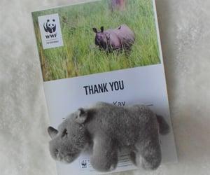 adoption, white, and WWF image