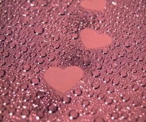 beautiful, nature, and pink image