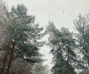 christmas, road, and snow image