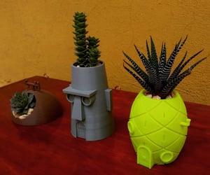 decoracion, eco, and suculentas image