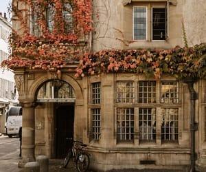autumn colors, cambridge, and europe image