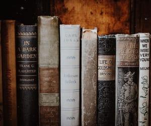 autumn colors, bibliophile, and classics image