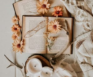 aesthetics, autumn colors, and book image