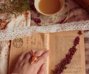 book, old time, and rustic image