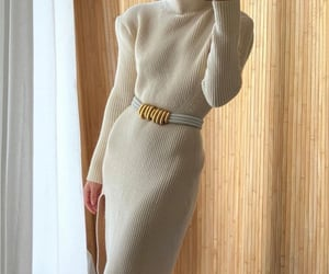 accessories, bottega veneta, and dress image