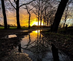 puddle, farm, and home image