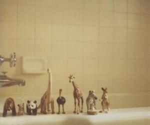 animal, bathroom, and toys image