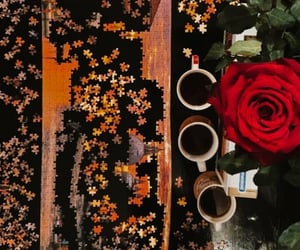 aesthetic, home decor, and red rose image