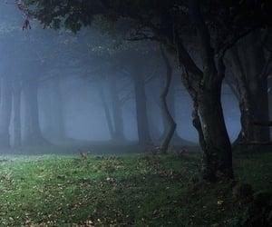 aesthetic, autumn, and dA image