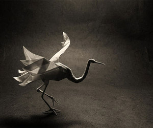 origami, bird, and crane image