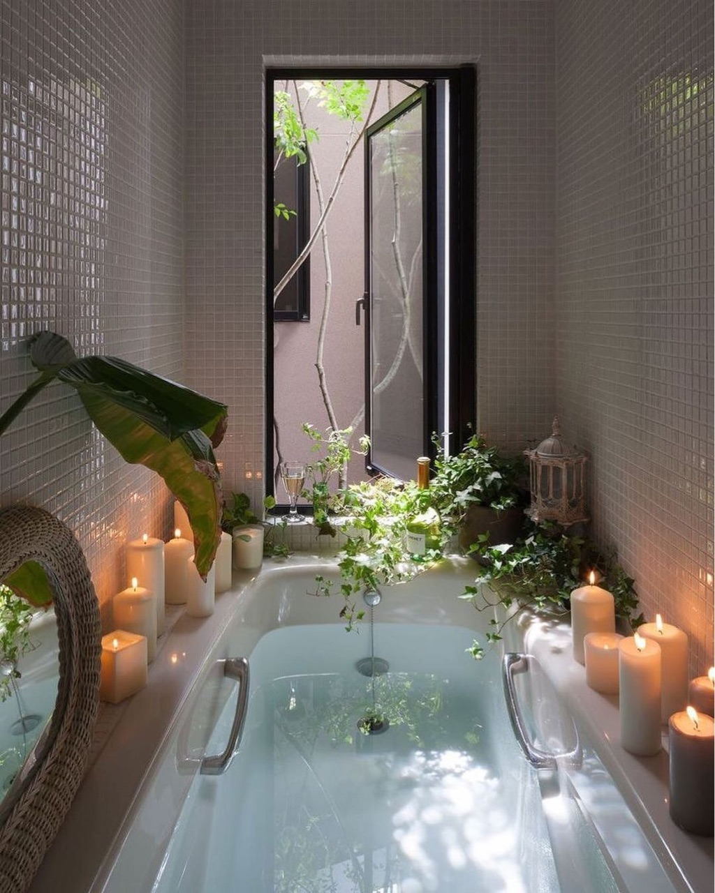 plants and bath image