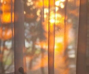 sun and sunlight image