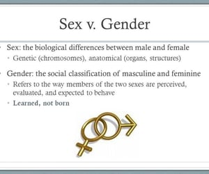 biology, sexism, and feminismo image