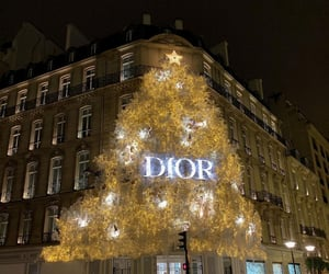 aesthetic, alternative, and Christian Dior image