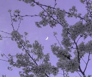 fantasy, lilac, and moon image