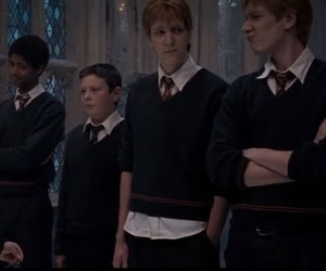 dean thomas, gryffindor, and fred weasley image