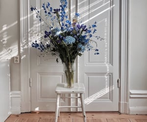 flowers, blue, and home image