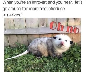 funny, haha, and introvert image